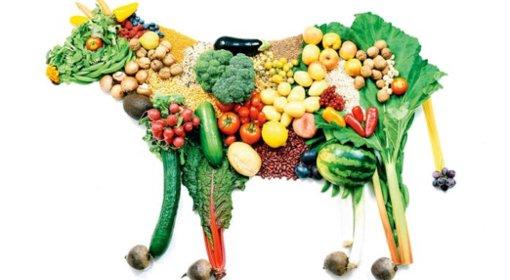Como ter uma alimentação vegetariana e saudável!
